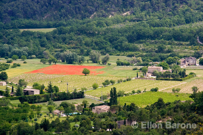 The lovely Vaucluse Plateau as viewed from the hilltop village of Gordes, Provence, France, Europe