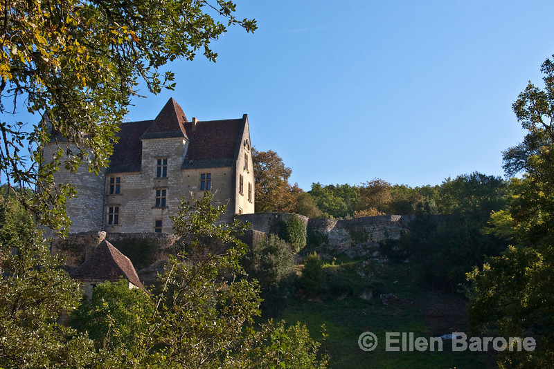 Chateau, Dordogne River valley, France