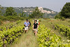 Wayfarers walking tour participants enjoy a scenic stroll near Gordes, the Luberon, Provence, France, Europe