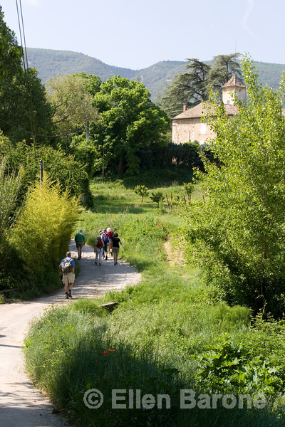 Wayfarers walkers in the Luberon, Provence, France, Europe