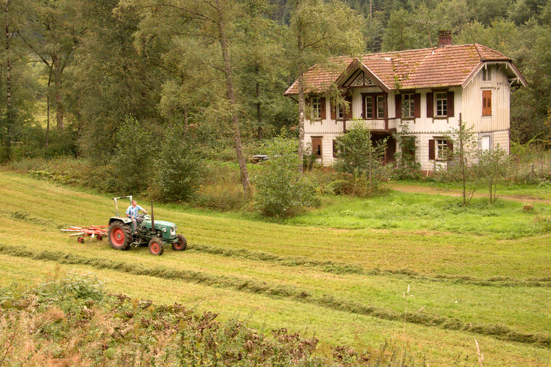 Rural scenic, haymaking, tractor, Black Forest, Germany, Europe.