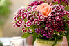 A tiny vase bursts with color atop a cafe table in the Luberon, Provence, France, Europe.