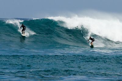 Wiamea Surfers Oahu