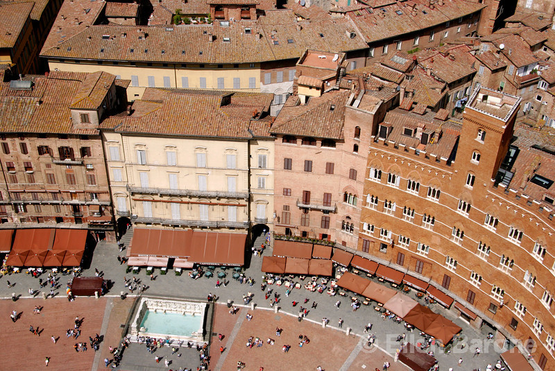 The Piazza del Campo and Fonte Gala viewed from the Torre del Mangia, Siena, Tuscany, Italy