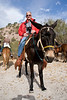 Safari Quest passenger, Hank Barone, ready to embark on a burro ride in Puerto Agua Verde, Sea of Cortez, Baja California Sur, Mexico.