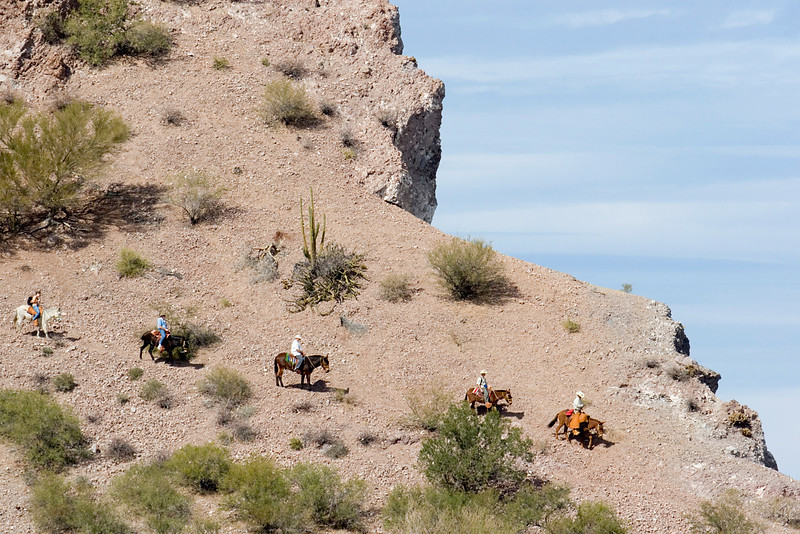 Safari Quest passengers descend the final steep slope of a 18-km burro ride through the mountainous countryside of Puerto Agua Verde, Sea of Cortez, Baja California Sur, Mexico.
