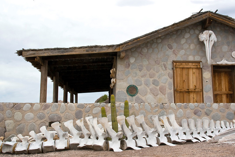 The bleached remains of a whale vertebrate acts as a picket-fence for this remote cottage on Isla Coyote, a lonely fishing outpost in the Sea of Cortez, Baja California Sur, Mexico.