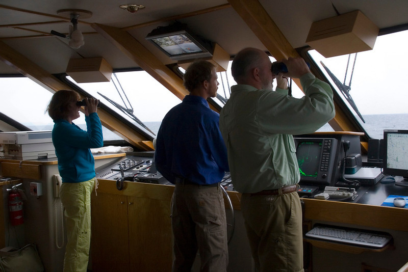 Passengers and crew search for marine life in Safari Quests' wheelhouse, Sea of Cortez, Baja California Sur, Mexico.