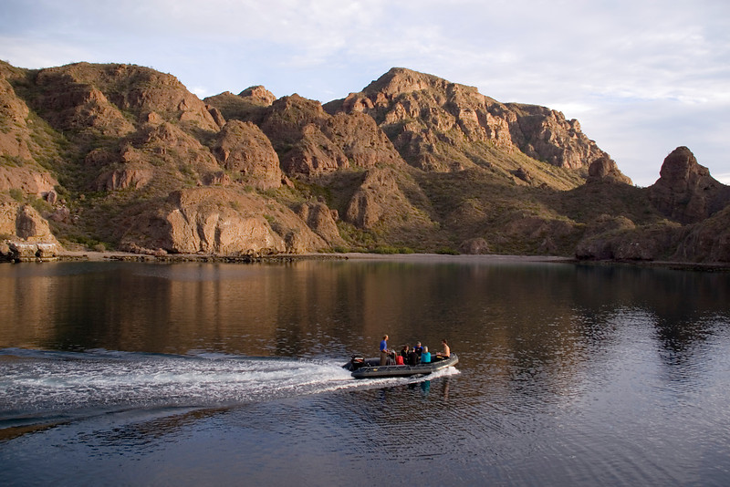 Safari Quest passengers enjoy an early morning skiff ride off the coast of Isla Danzante, Sea of Cortez, Baja California Sur, Mexico.