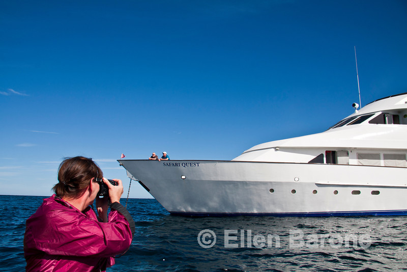 Returning to Safari Quest after a photography skiff ride, Sea of Cortez, Baja California, Mexico.