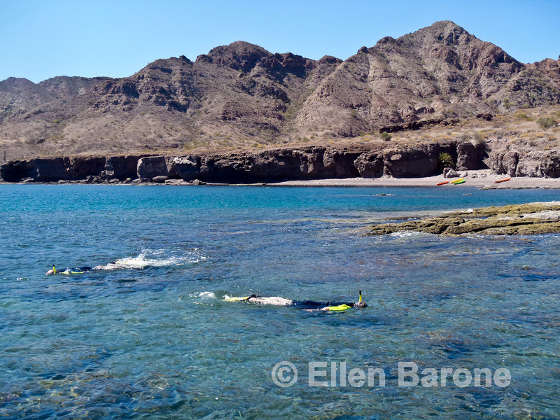 Snorkeling, Sea of Cortez, Baja California, Mexico.