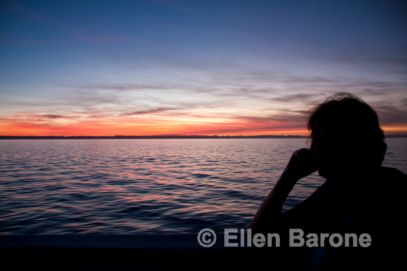Safari Quest passenger(s) enjoy a picture-perfect Sea of Cortez sunset, Baja Sur, Mexico.