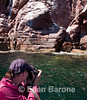 Photographing sea lions at Los Islotes, Sea of Cortez, Baja California, Mexico.