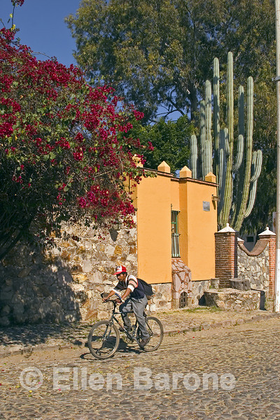 Street scene, house with cactus, Ajijic, Jalisco, Mexico.