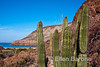 The vibrant colors of nature at Ensenada Grande,  Isla Espiritu Santo, Sea of Cortez, Baja California, Mexico.