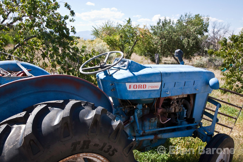 Rural scenic, tractor, orchard, Chimayo, New Mexico.