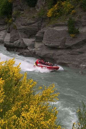Jet boating at breakneck speeds on the Shotover River is a favorite adventure for  visitors, Queenstown, South Island, New Zealand