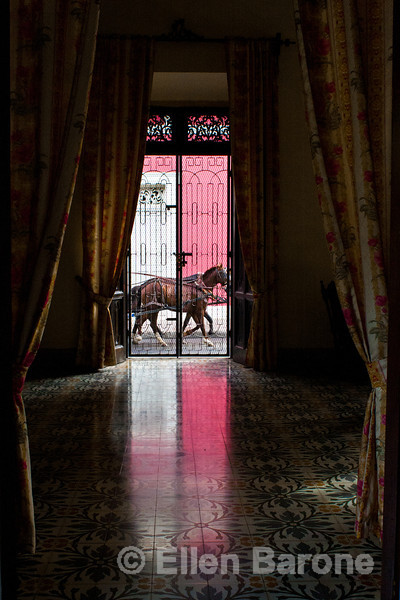 View of horse drawn carriage from reception lobby, Hotel la Bocona, an intimate six guest room boutique hotel in a restored colonial mansion in Granada, Nicaragua.
