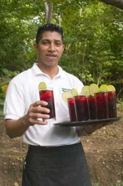 friendly bartender, Morgan's Rock Hacienda & Eco-lodge, near San Juan del Sur, Pacific coast, Nicaragua, Central America