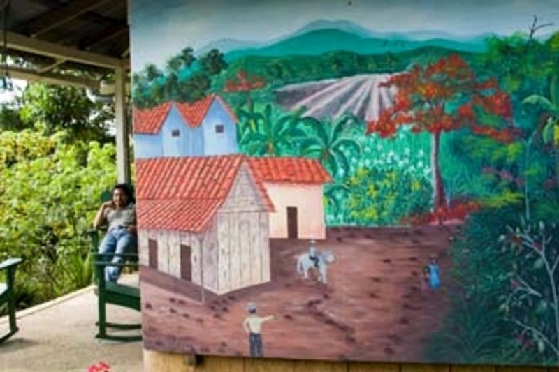 wall mural, Finca Esperanza Verde Eco-lodge and Nature Preserve,, nothern Nicaragua, Central America