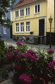 Old Bergen, a lovely hillside area that survived the tragic ammunition explosion of 1944 which devistated the city, Bergen Norway