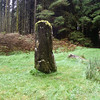 Photographer, standing stones at Dervaig, Isle of Mull, Scotland, U.K.
