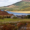 Rural scenic, farmhouse and loch, Isle of Mull, Scotland, U.K.