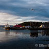 Oban harbor at sunset, Scotland, U.K. (Hebridean Princess cruise ship at dock).