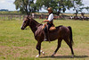 Gaucho on horseback, El Ombú de Areco, an historical estancia (ranch) just over an hour's drive from downtown Buenos Aires, is located in San Antonio de Areco, birthplace of the gaucho tradition. ©2007 Hank Barone.