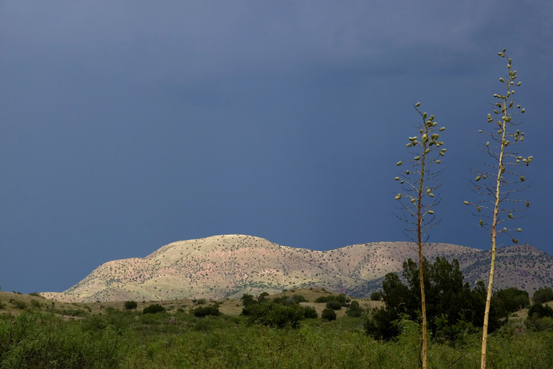 Stormy light casts its magic across the emerald-green hillsides outside Silver City, New Mexico, USA (Gila environs)