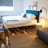 Trumbull and Porter Dog-Friendly Hotel