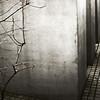 Etz Chaim<br /> <br /> Holocaust Memorial aka Memorial to the Murdered Jews of Europe, Berlin, Germany.
