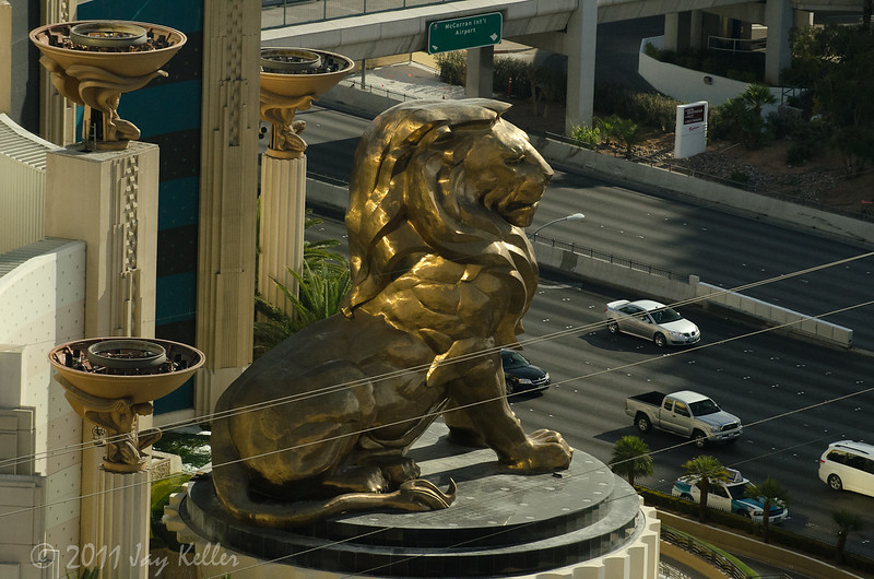 MGM lion from our window.