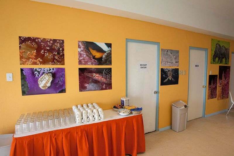 Eric's Pictopia prints on the wall