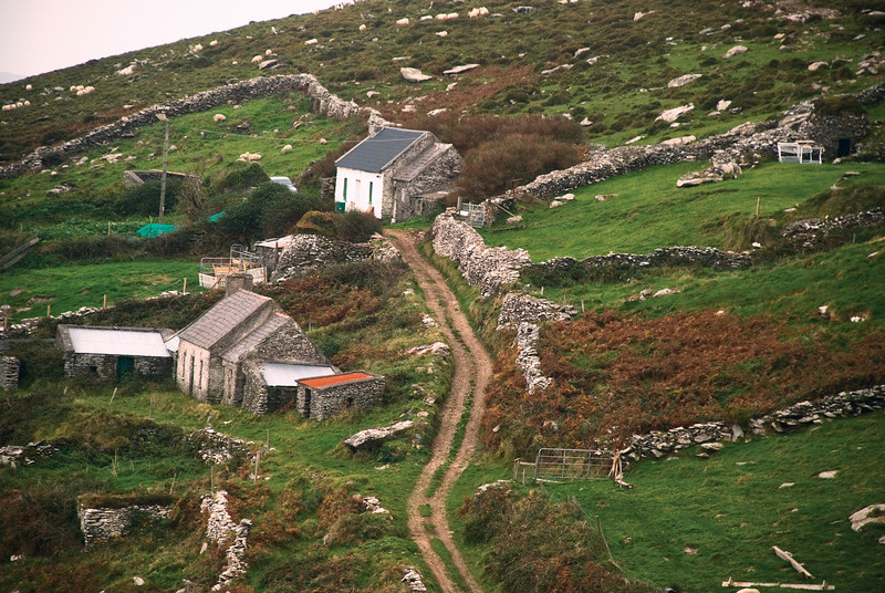 Farm along Dingle way near Slea Head