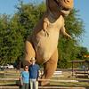 T-Rex, Dinosaur Valley State Park