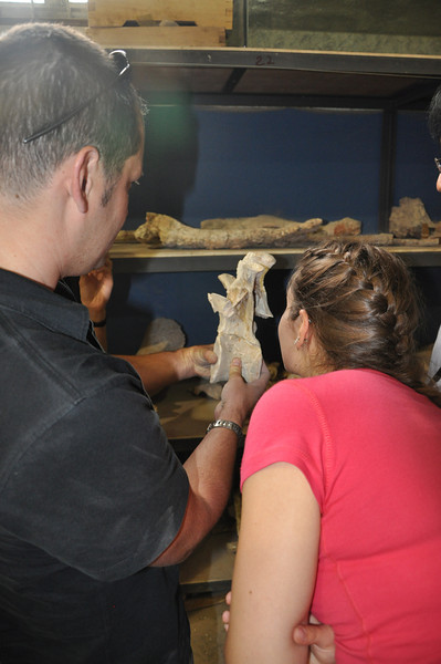 "Matt and Jessie examining a thoracic vertebra of the bizarre, herbivorous, <a href=""http://www.livescience.com/animals/090714-clawed-dinosaur.html"">""pot-bellied""</a> <a href=""http://en.wikipedia.org/wiki/Therizinosaur"">therizinosauroid</a> theropod <i>Suzhousaurus</i>, which Matt and I were fortunate enough to have helped Da-qing and Hailu describe a couple years ago.  Da-qing and his team have recovered many new specimens of <i>Suzhousaurus</i> that will help us better understand this dinosaur, and make it one of the best-known therizinosaurs!"
