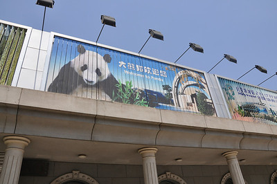 WELCOME...  ...to Panda.