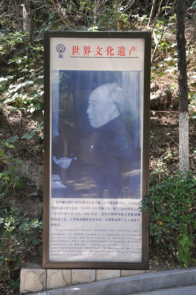 Yang Zhongjian, known in the West as C.C. Young, the first native Chinese paleontologist.