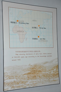 Map showing where Homo erectus fossils have been found -- actually, just showing some of the more famous and far-flung localities; there are dozens of others in between, as well as in Africa.