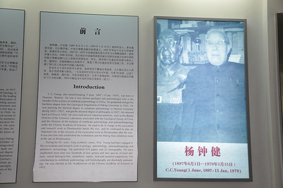 Near the entrance, there was a small exhibit dedicated to C.C. Young -- which he assuredly deserves!