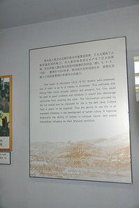 This sign explains that ash layers in the Zhoukoudian caves demonstrate that Peking Man had the use of fire.