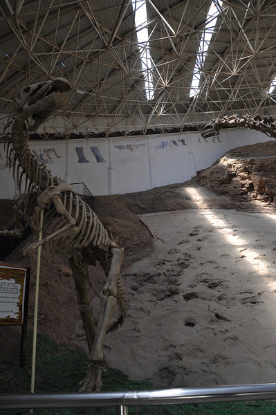 """Behind the <i>Lanzhousaurus</i> skeleton is the main Liujiaxia tracksite.  Visible at this distance are sauropod tracks -- eNORmous sauropod tracks.  The ones in the lower left of the surface were made in gooier, sloppier mud, so the tracks are deeper, less clear, and surrounded by displaced mud; the ones toward the upper part of the surface, as well as to the right, were made in firmer, stiffer mud and are therefore somewhat better defined.  There are also theropod, ornithopod, and pterosaur tracks on this surface; bird tracks were collected from the site, but from a stratigraphically higher layer.  You can read more about this site <a href=""""http://cactus.dixie.edu/jharris/Lietal_Hekou_track.pdf"""">here</a>.  This is part 1 of a 6-part panorama; the other 5 parts follow."""