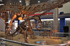 "In the foreground here is a mounted skeleton of the basal sauropodomorph (""prosauropod"") <i>Lufengosaurus</i> in bipedal posture.  The background is dominated by a mount of the sauropod <i>Mamenchisaurus</i> that was sadly, by virtue of the layout of the room, virtually unphotographable."