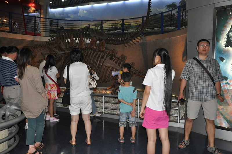This was really cute: the kid up front with the megaphone was leading this tour group through the dinosaur hall.  I have no idea what he was saying, but the thought of 8 year-old docents leading tours in museums was both surprising and adorable!  (Well, people are always telling me how much their young children know about dinosaurs...let's put 'em to work!)