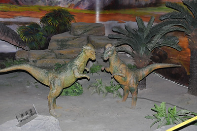 Two apparently juvenile pachycephalosaurs about to butt heads.  Or box.  Or play the baijiu drinking game.  Hard to tell.