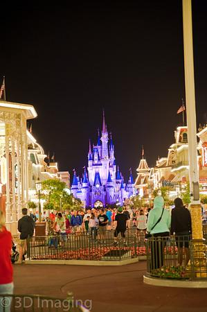 Disney 2013 Epcot & Magic Kingdom