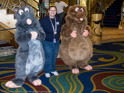 OMG!  The Wonder has rats!