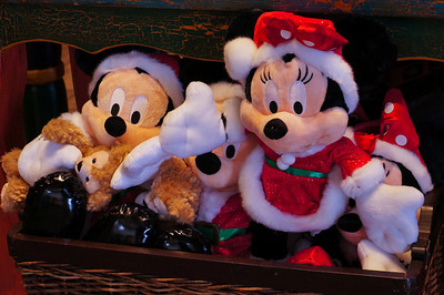 Disney World - December 2013