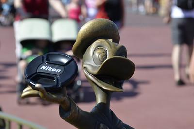 Disney World May 16-18 2011